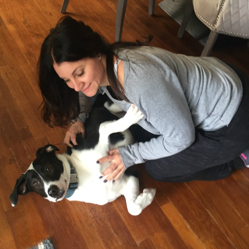 Rose Lyn Petruzzi gives dog love
